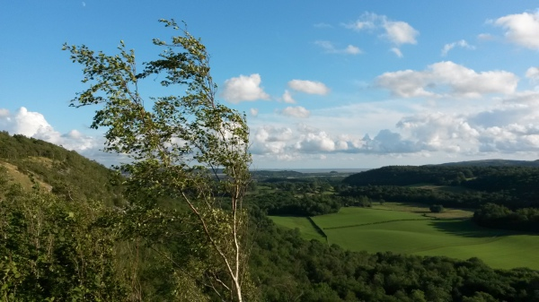 Whitbarrow, cumbria, witherslack, view, walk, wood, workshop, beautiful