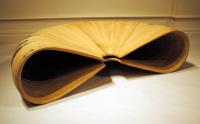 curiosity, steambent, form, sculpture, solid wood, woodwork, kevin reiswig
