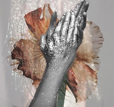 Image by Aylea Skye