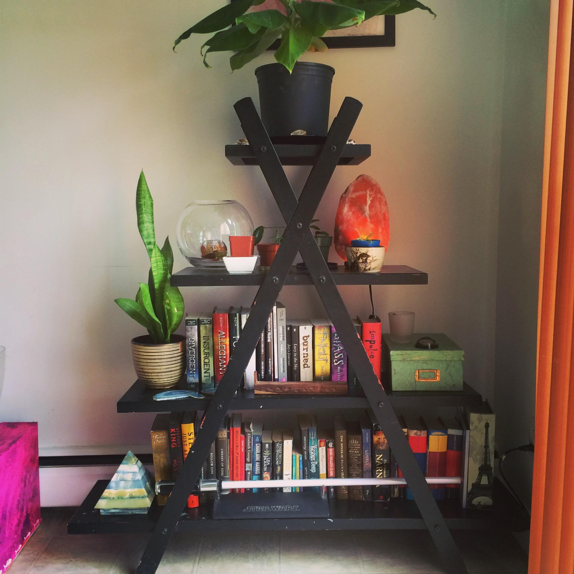 My Newest Bookshelf.