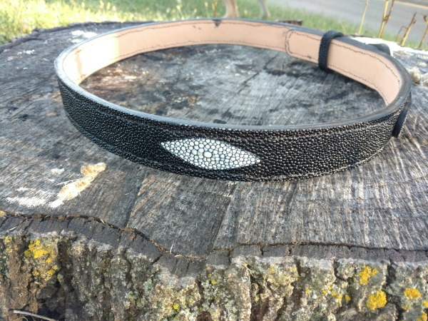 Stingray Ranger style belt.