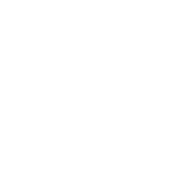 Bedouin Tech