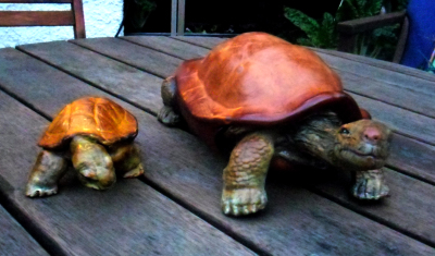 Moulded Turtles by Tim Swainson