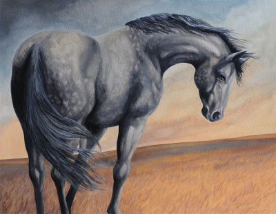 """Grey Grace""   SOLD"