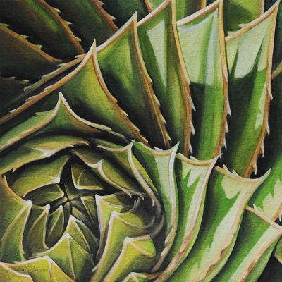"""Spiral Aloe No. 1"""