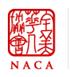 NACA Young Profession Mentor