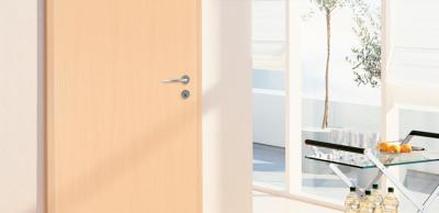 interior door light wood