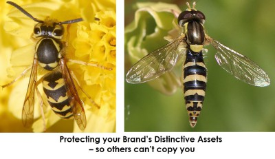 Protecting your Brand's Distinctive Assets - so other's can't copy you
