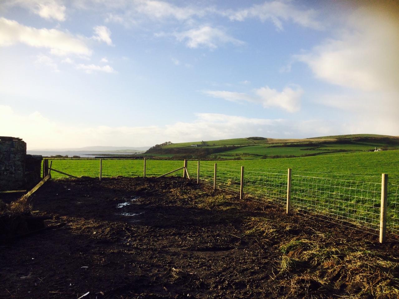 new boundary fence