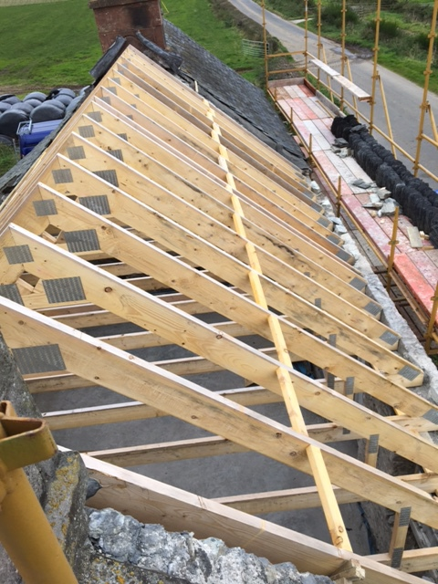 new roof
