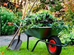 - Garden Maintenence -