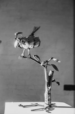 'Bird'