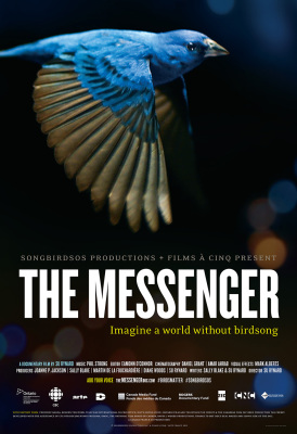 Film review:  The Messenger, now widely available, is a film not to be missed