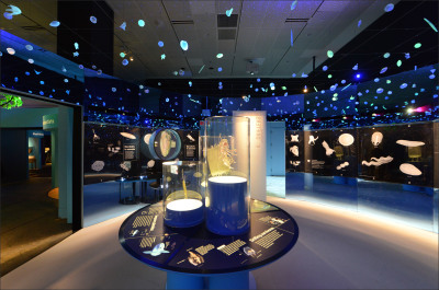 The American Museum of Natural History's New Exhibit: Unseen Oceans