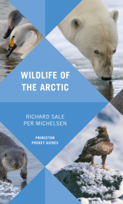 Book Review: Wildlife of the Arctic by Richard Sale and Per Michelsen