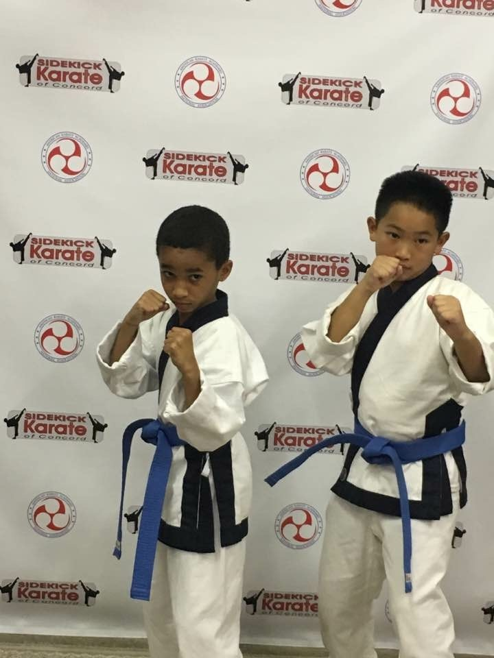 Sidekick Karate of Concord NC Class