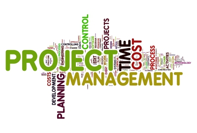 REALISATION Project management