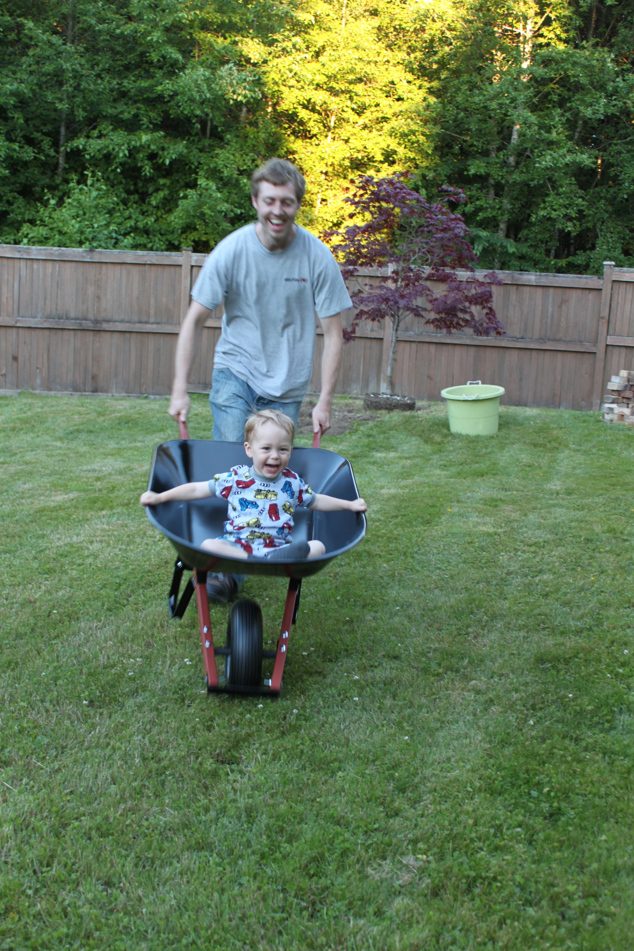 man pushing son in wheelbarrow
