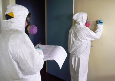 Check for Hazardous Materials Before Renovating