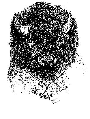 Buffalo Patrol
