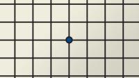Amsler Grid Test Chart