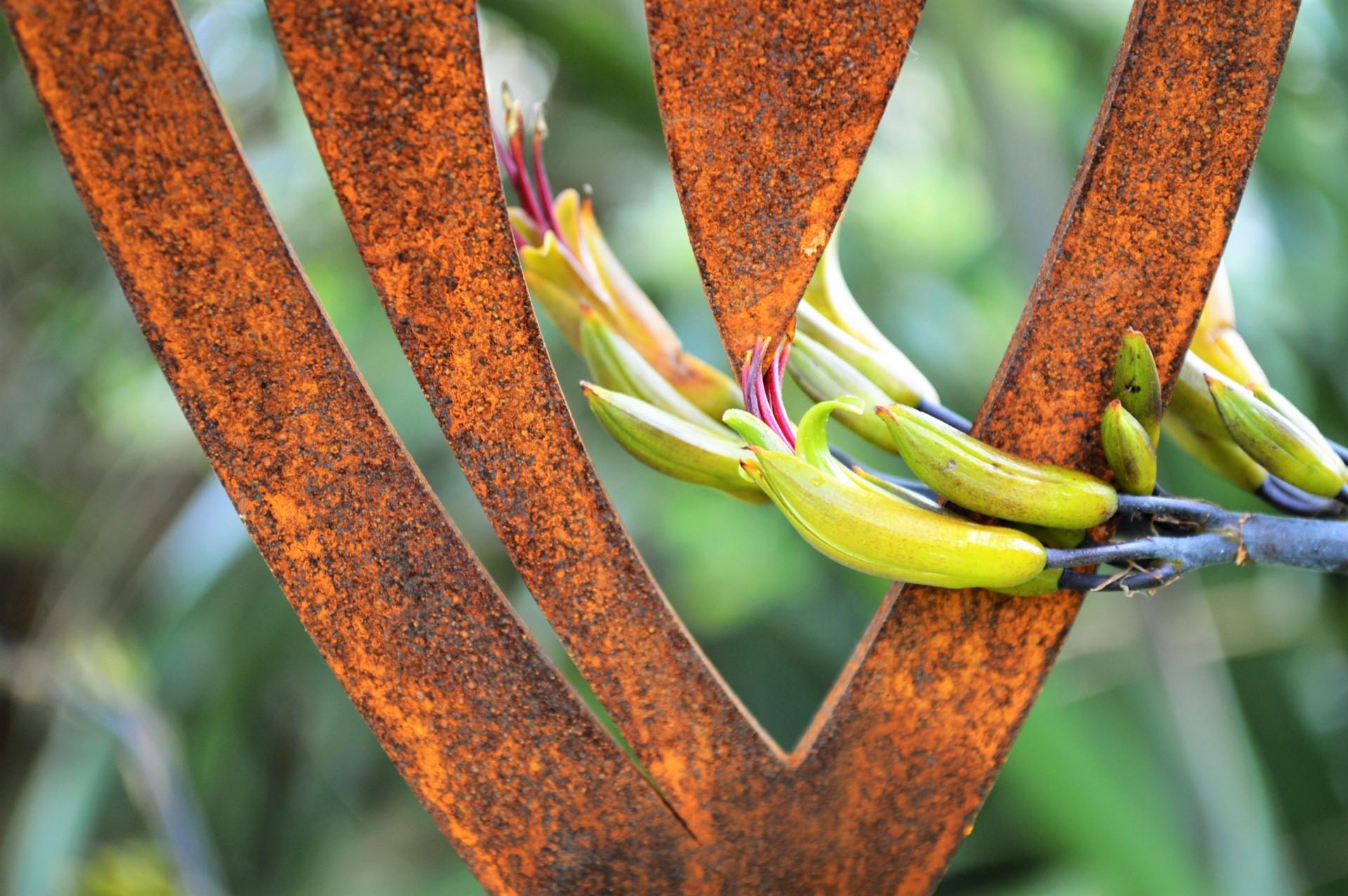 patena garden art