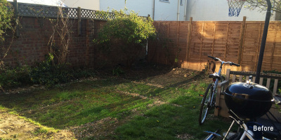 The Garden Before Work Started