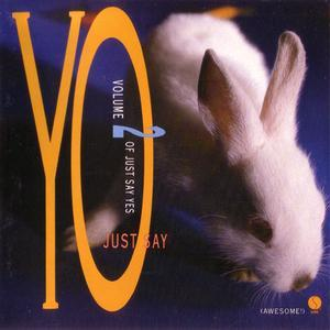 Just Say Yo (Volume II Of Just Say Yes) (1988) - Various Artists