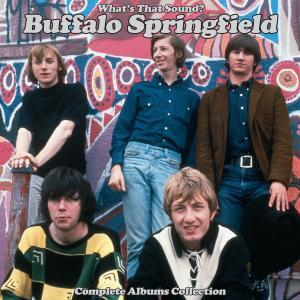 What's That Sound? Complete Albums Collection (2018) - Buffalo Springfield