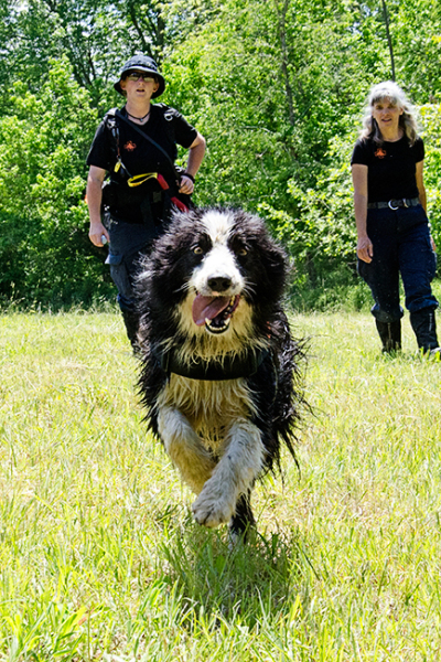 Fielder, a skilled and experienced Search and Rescue K9
