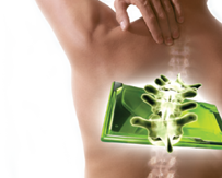 Back Pain, Scoliosis, Herniated Discs