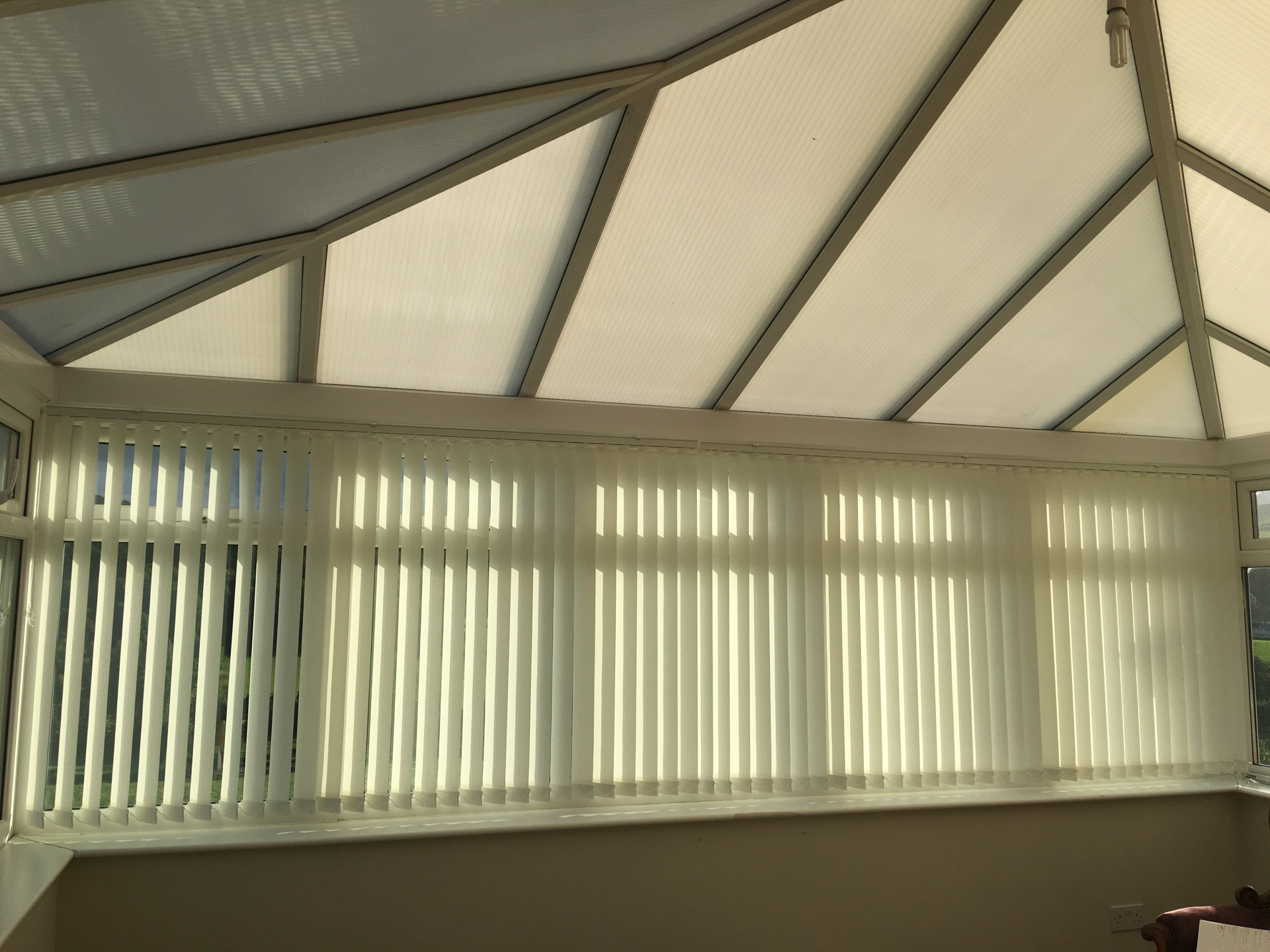 Window Blinds Office Blinds