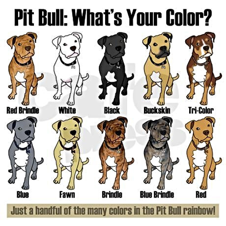 Genetics Of Breed Color