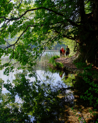 A walk in the park, Plitvice National Park, Croatia.