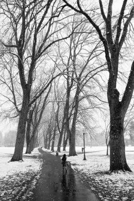 Winters last storm.