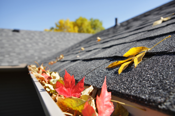 """<img src=""""Gutter Cleaning.jpg"""" alt=""""Gutter Cleaning services in Vancouver and Lower Mainland BC"""" title=""""Gutter Cleaning services in Vancouver and Lower Mainland BC"""">"""