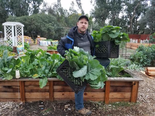 Farmer Adam Winter Harvest