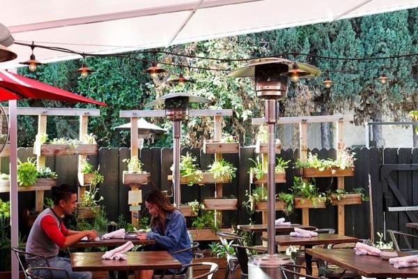 Patio Garden Setting