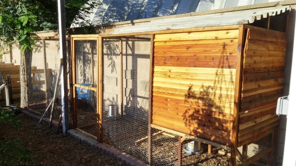 Chicken coop at the Farm