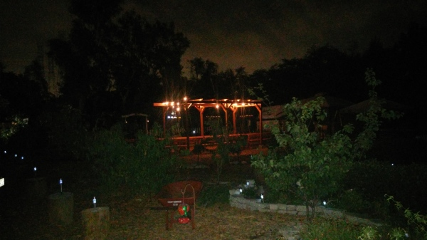 Night view at the farm