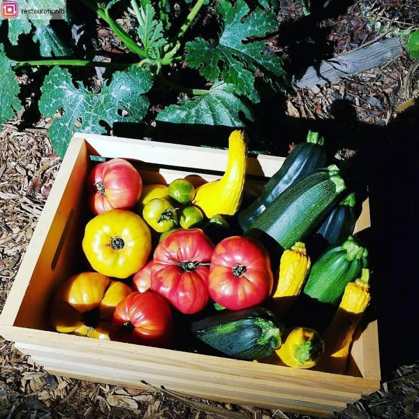 Produce in the garden tote