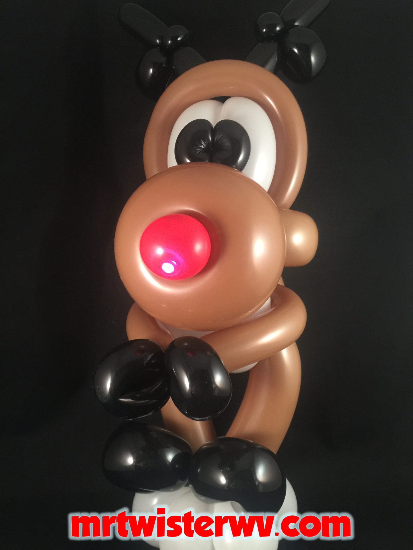 Rudolph Balloon Picture