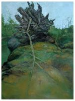 Bruce Fortney Uprooted Tree fallen Twig