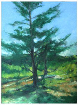 Greg's Tree  Bruce Fortney