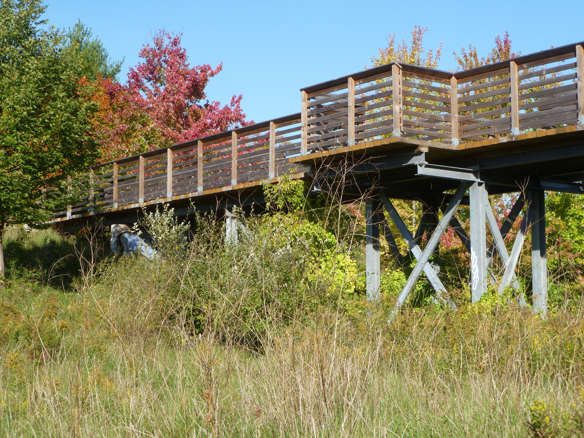 bridge, rail-trail, trestle bridge