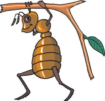 How can I be an ant?
