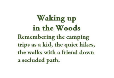 Waking up in the Woods Collection