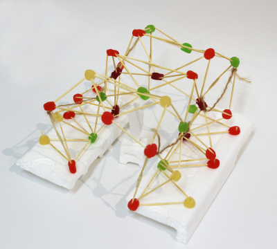 TEAM 2 - 结构模型 structure model