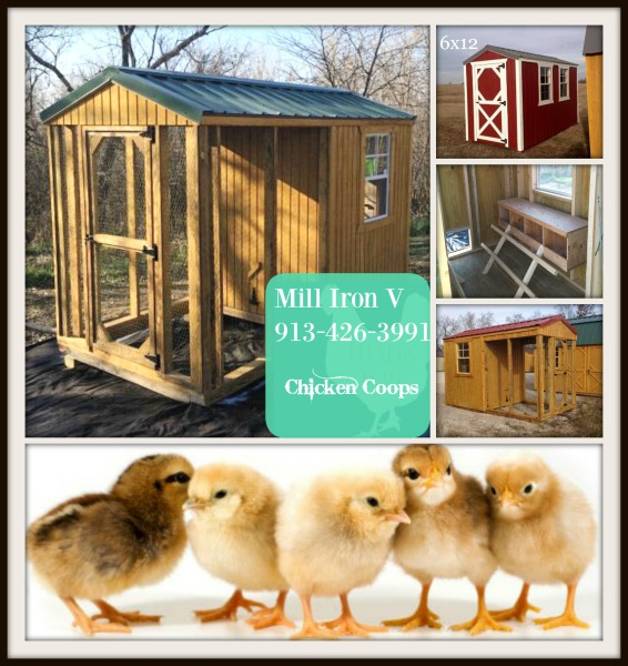 Poultry House, duck barn, turkey house, chicken coop portable, move able