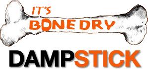 Dampstick Logo for Self Storage Devon